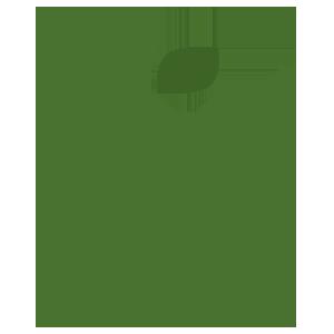 *Bio-bach bloesem