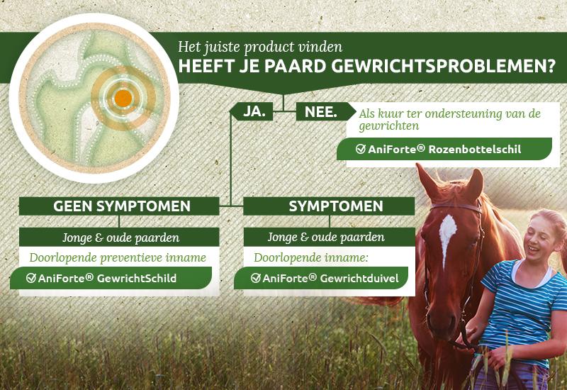 Paard Gewrichtsproblemen